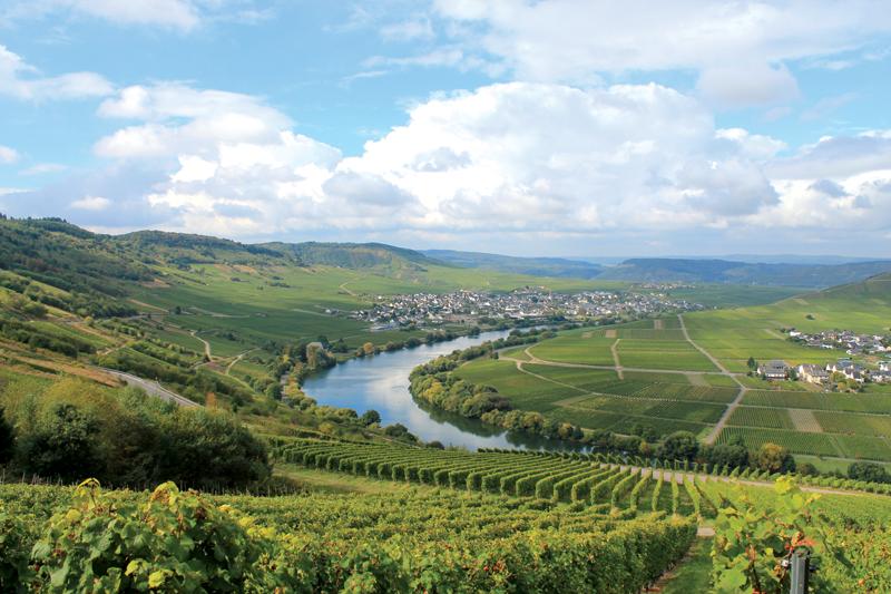 Die Mosel schlängelt sich vom Dreiländereck bis Koblenz durch eine einzigartige Natur- und Kulturlandschaft
