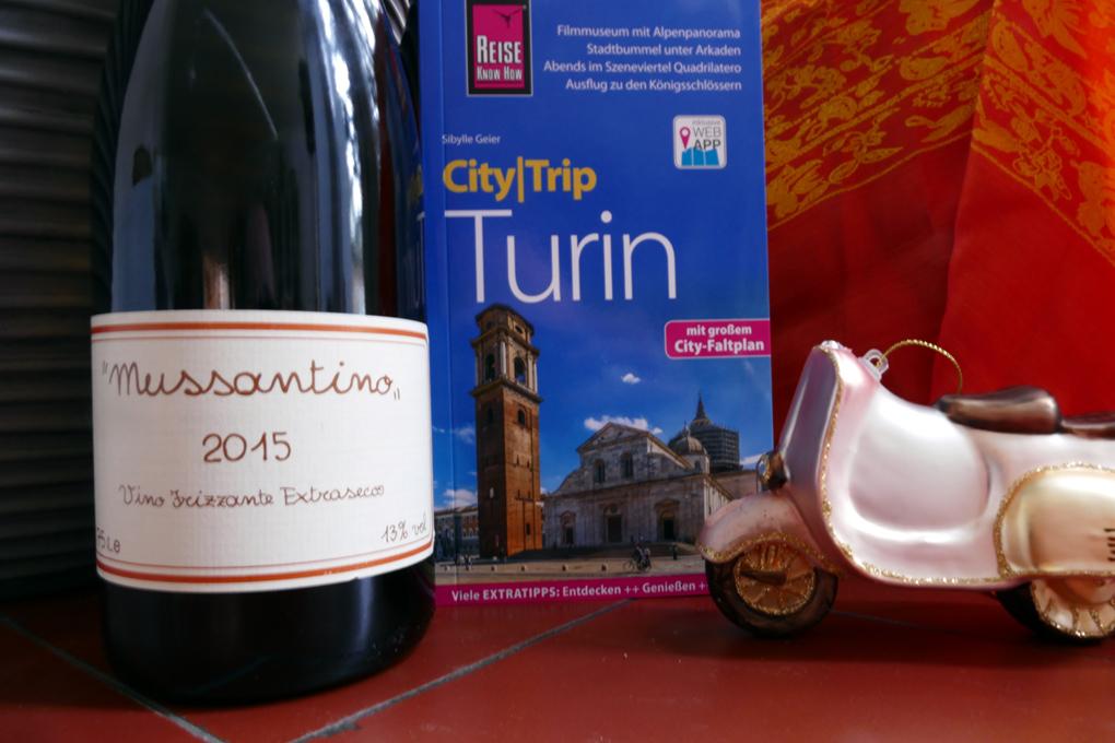 CityTrip Turin